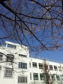2012-04-01 09.02.18.jpg
